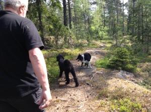 2013-05-17 promenad med Gösta2 014