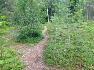 Vilse i skogen 2013-08-10 033