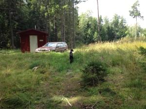Vilse i skogen 2013-08-10 098