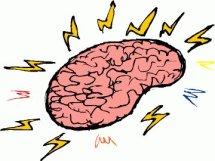 58008-brain-full1