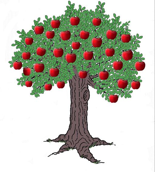 äppelträd 1