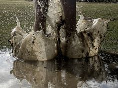 hoppa i lera.jpg