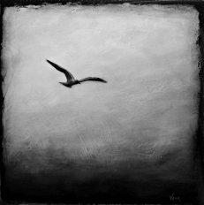 fågel i fjärran.jpg