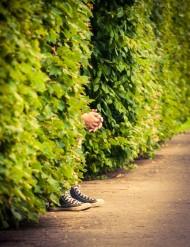 gömma sig i buskarna.jpg