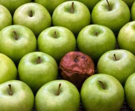 goda-applen-och-det-onda