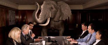 elefanten i rummet 1