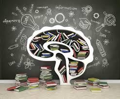 huvudet fullt av kunskap.png