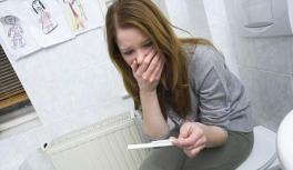 gravid sticka.jpg