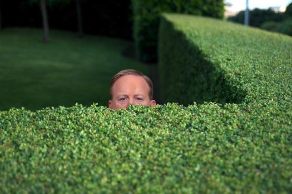 gömma sig i buskarna.png