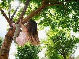 flicka i träd