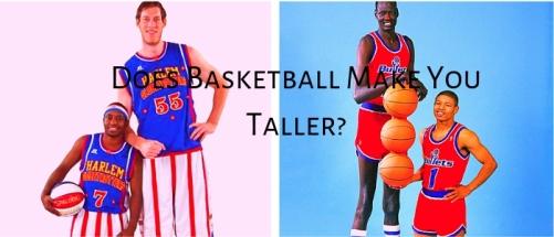 Basket växa 1.jpg