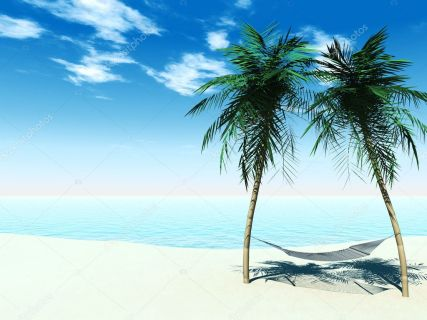 hängmatta mellan två palmer