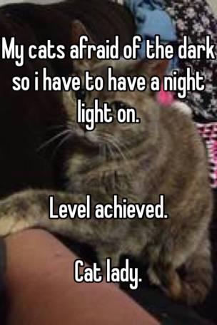 katt rädd för mörkret 2