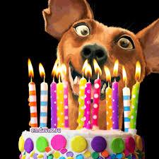 födelsedagshälsning gif 4